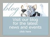 Visit our blog for latest news and events
